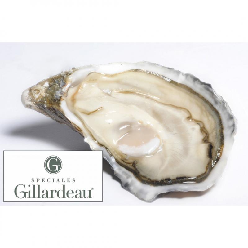法國吉拉多生蠔 3號 (6顆) /GILLARDEAU No3 (6pc)