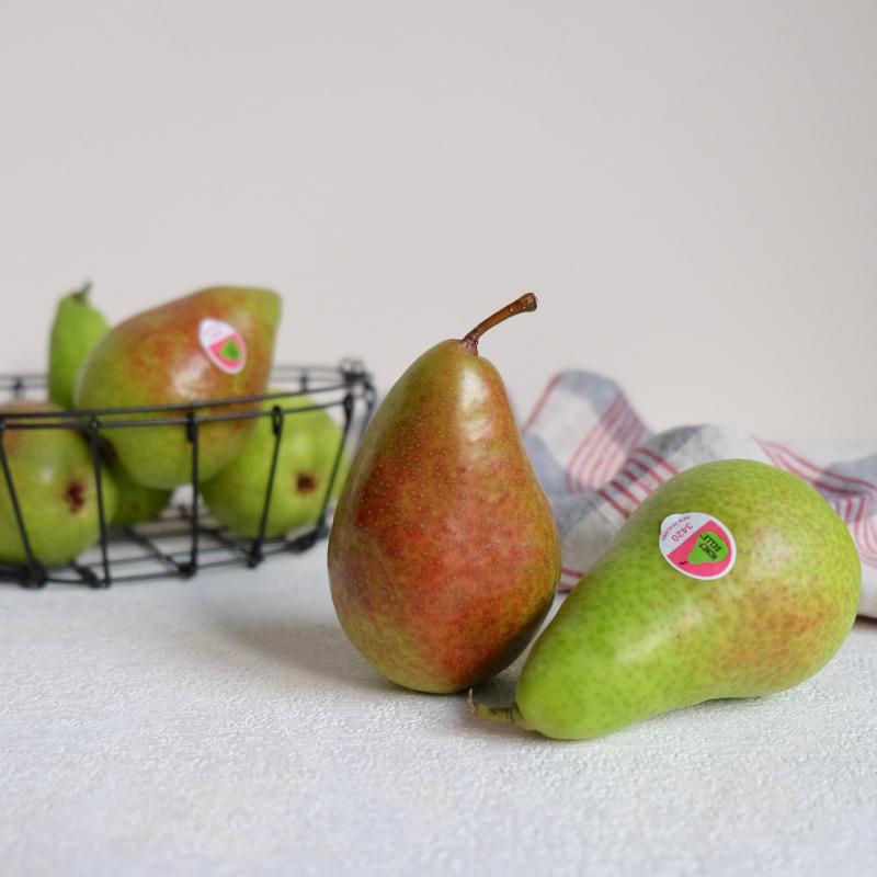 【蔬食樂】紐西蘭香梨10入
